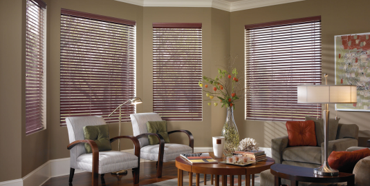 Phoenix Best Price Window Blinds